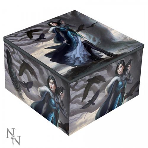 Anna Steinbauer, Raven Mirror Box