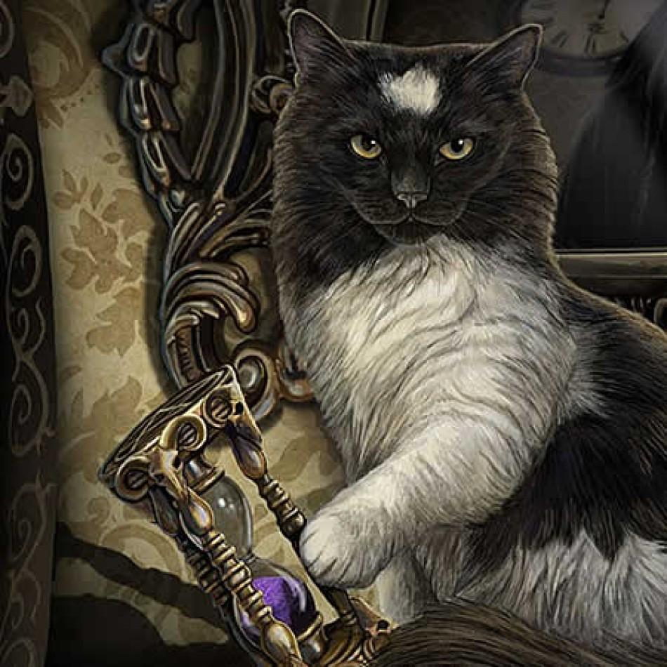 Black Cat White Cat Guardian Review