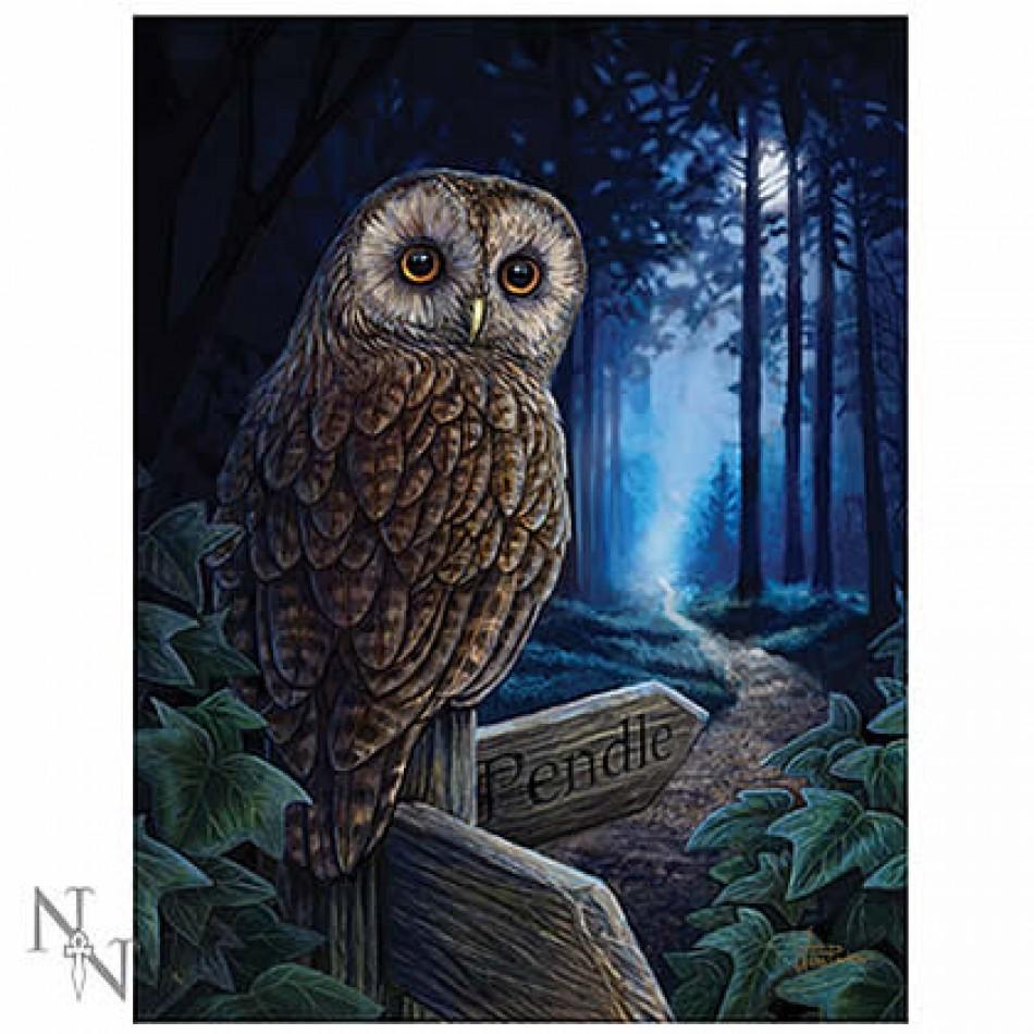 Lisa Parker Nemesis Now Owl Messenger Bag Moon Shadows hare design
