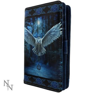 Nemesis Now Anne Stokes Awaken Your Magic Purse