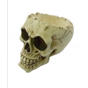 Nemesis Now Lobo Skull
