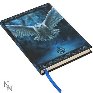Nemesis Now Anne Stokes Awaken Your Magic Embossed Journal