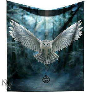 Nemesis Now Anne Stokes Awaken Your Magic Throw