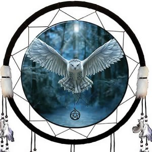 Nemesis Now Anne Stokes Awaken Your Magic Dream Catcher
