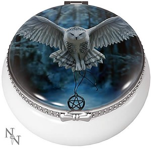 Nemesis Now Anne Stokes Awaken Your Magic Trinket Box
