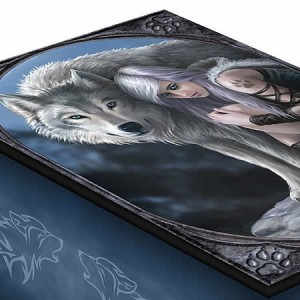 Nemesis Now Anne Stokes Protector Tarot Box