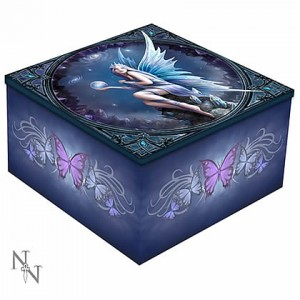 Nemesis Now Anne Stokes Stargazer Mirror Box