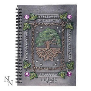 Nemesis Now Dream Book Resin Journal