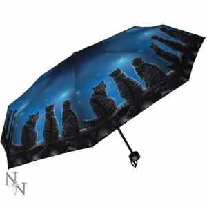 Nemesis Now Lisa Parker Wish Upon A Star Umbrella