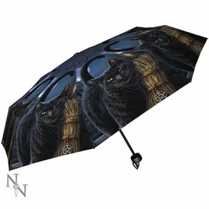 Nemesis Now Lisa Parker A Brush With Magick Umbrella