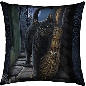 Nemesis Now Lisa Parker A Brush With Magick Cushion