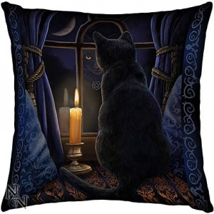 Nemesis Now Lisa Parker Midnight Vigil Cushion