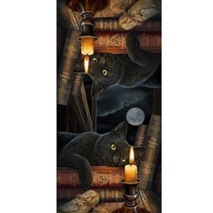 Nemesis Now Lisa Parker Witching Hour Scarf