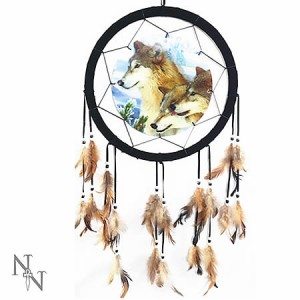 Nemesis Now Pack At Dawn Dreamcatcher