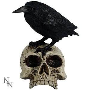Nemesis Now Raven On A Skull