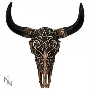 Nemesis Now Skull Ritual Remains