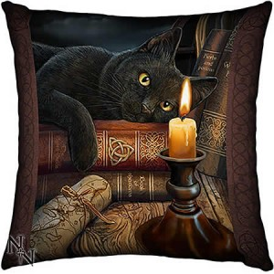 Nemesis Now Lisa Parker Witching Hour Satin Cushion