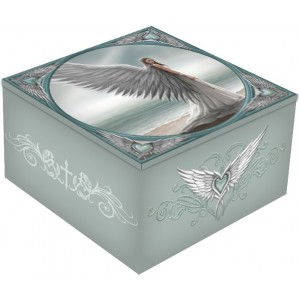 Nemesis Now Designer Anne Stokes Spirit Guide Mirror Box