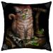 Linda M Jones, Pirate Kitten, Cushion